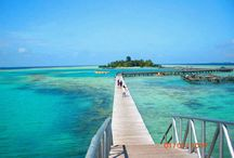Dive Indonesia / diving and snorkling places arround indonesia