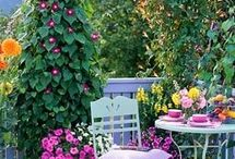 Cute garden ideas