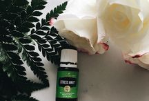 Wellness & Essential Oils