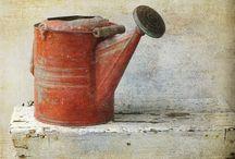 watering cans / by Brenda Refsland