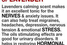 Foods that help depression