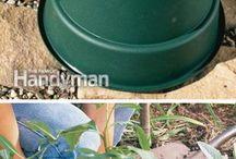 Tips-uri pentru grădină