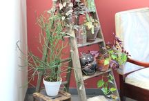 Indoor Gardens / by LIFESTYLE REMIX with Rebecca Gitana