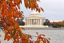 Fall in Washington, D.C.