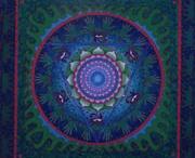 Mandala / by Jolie Blue