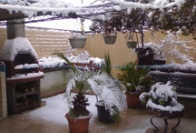 Snow in Rome and surroundings
