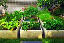 small backyards