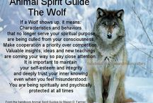 Animal guides / Mystical meaning of animals