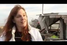 BBC News Norfolk floods Minister begins appeal for residents