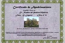 Adopt an olive tree  -  Apadrina un olivo / Programa de apadrinamiento de olivos centenarios en Sevilla (España). Ellos necesitan tu ayuda para no desaparecer. Apadrina un olivo, solo por 12 € al año.   www. apadrinaunolivocentenario.com ----------------------------------------------  Adoption Program of centenaries olive trees in Seville (Spain). They need your help in order to survive. Adopt an olive tree, only 12 € a year.  www.adoptacentenaryolivetree.com / by Jose Paez