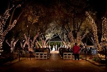 Padua Hills Theatre / by Miriam Corona Events