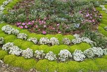City flower garden