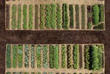 farm gardens