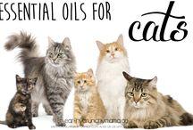 Oli essenziali per animali d'affezione