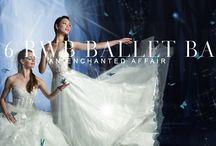 An Enchanted Affair - 2016 Ballet Ball