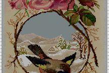 pták zima růže