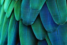 Fantasie kleuren