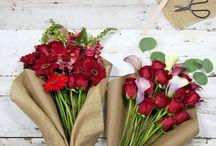 Mr. Bouquet