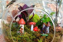 Fairy Houses & Cups