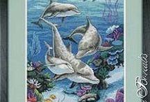 mořska zvířata