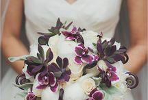 Amelia's Wedding