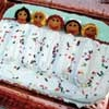 Cake decorating / by Brandy Barnett