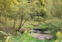 Platteville, WI Natural Beauty