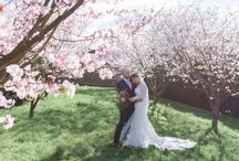 Spring Weddings / Blossom, Buds, Beautiful Light - Spring is a wonderful season to get married