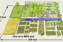 Acre homestead