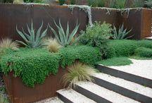 ogród Agawowy