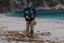 collecting driftwood / μαζεύοντας θαλασσόξυλα..