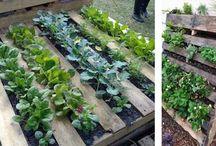 Idee per Scaldasole / mobili, arredi, soluzioni a basso costo per realizzare il giardino condiviso