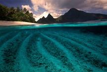 Beautiful Nature / by Lia Soeharto