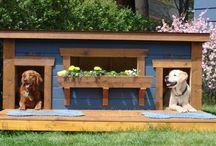budy dla psa i inne z drewna