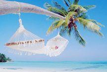 Dream holidays...