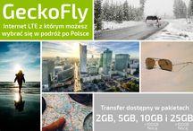 Usługi Geckonet / Tablica zawierająca zdjęcia i grafiki dotyczące usług Geckonet, w tym Internetu, Telefonu i Telewizji.