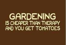 I'm in the garden... / by Rebecca Bridgeman