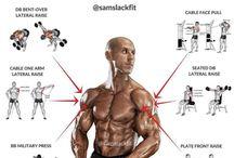Muskel und Gewicht