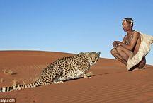 Original inhabitants of Africa