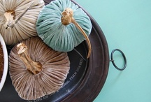 Plush Velvet Pumpkins / by LoveFeast Shop