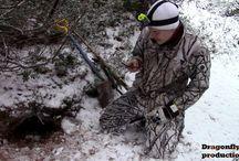 Fox hunting // Ketunmetsästys