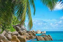 Tropical places : )