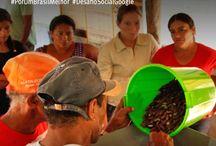 Desafio de Impacto Social Google | Brasil / O ISA está entre os finalistas do Desafio de Impacto Social do Google | Brasil!   Por meio do seu voto você pode ajudar cerca de 2 mil pessoas que serão beneficiadas diretamente com o processamento de cerca de 100 produtos florestais nas 41 comunidades – entre indígenas, ribeirinhas e extrativistas – nas quais o ISA atua.  Conheça  mais sobre o projeto de Mini-Usinas Open Source, vote e compartilhe com seus amigos! http://goo.gl/2UHw28