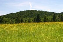 krásy Českej krajiny / príroda,mestá,hrady
