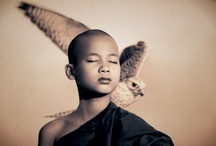 Gregory Colbert: Photography / Gregory Colbert (born 1960 in Toronto) is a Canadian film-maker and photographer best known as the creator of Ashes and Snow, an exhibition of photographic artworks and films housed in the Nomadic Museum. He traveled to such places as India, Burma, Sri Lanka, Egypt, Dominica, Ethiopia, Kenya, Tonga, Namibia, and Antarctica to film and photograph interactions between human beings and animals. / by Flo Renz