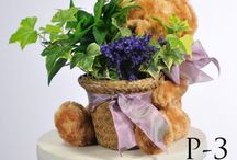 Plants / Plant arrangement are favorites for those who want a lasting gift.