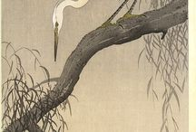 Wildlife paintings and inspiration / Paintings of wildlife