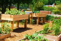 Giardinaggio-Orto