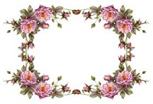 Marcos de Flores