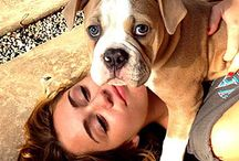 Stars and their Rescue Dogs